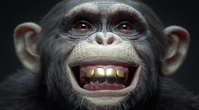 vray-winimax-monkey